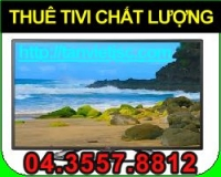 thue tivi chat luong